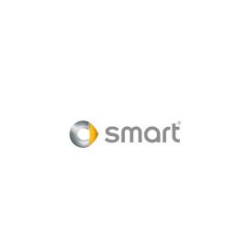 SmartCar_Client